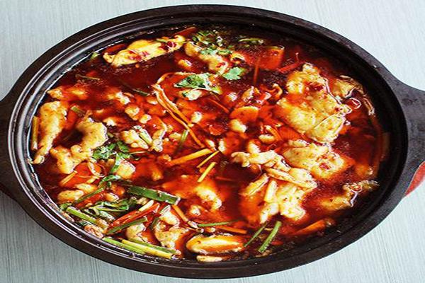 簋鱼锅钵钵鱼