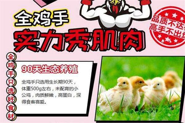 全鸡手炸鸡加盟
