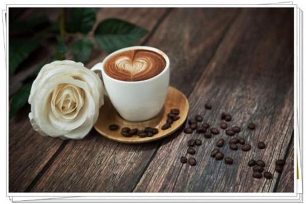 咖啡饮品培训