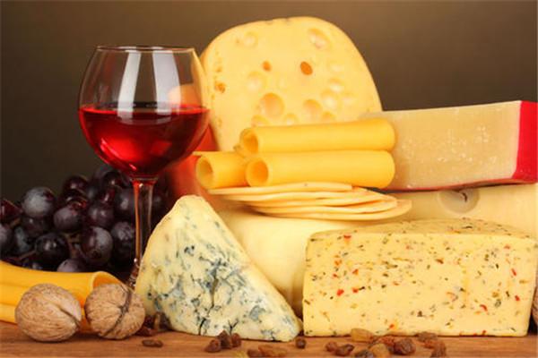 苏记奶酪加盟费多少
