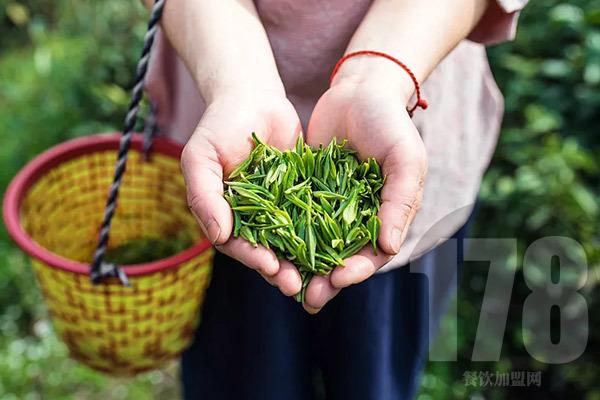 名茶村加盟总部具备哪些优势和实力?有优势才能站稳脚跟