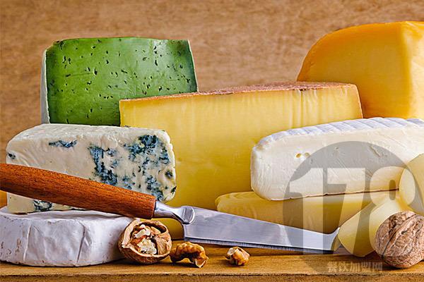 文宇奶酪加盟