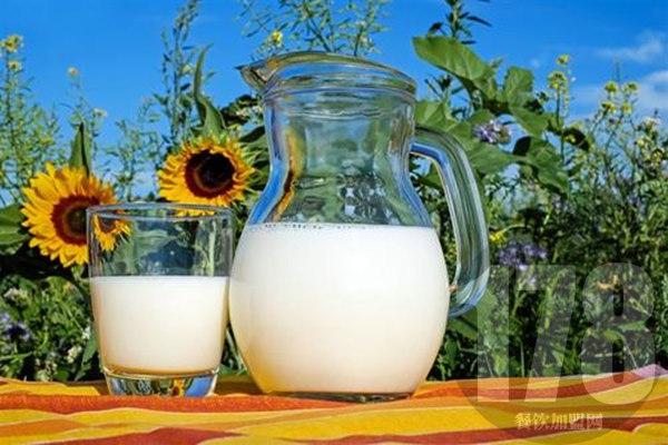 四季鲜奶吧加盟
