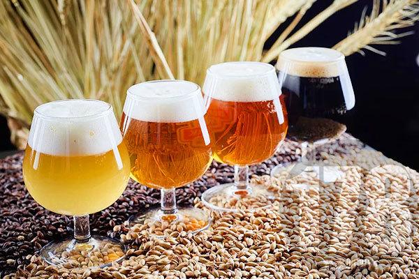 麦8度精酿啤酒全国多少家